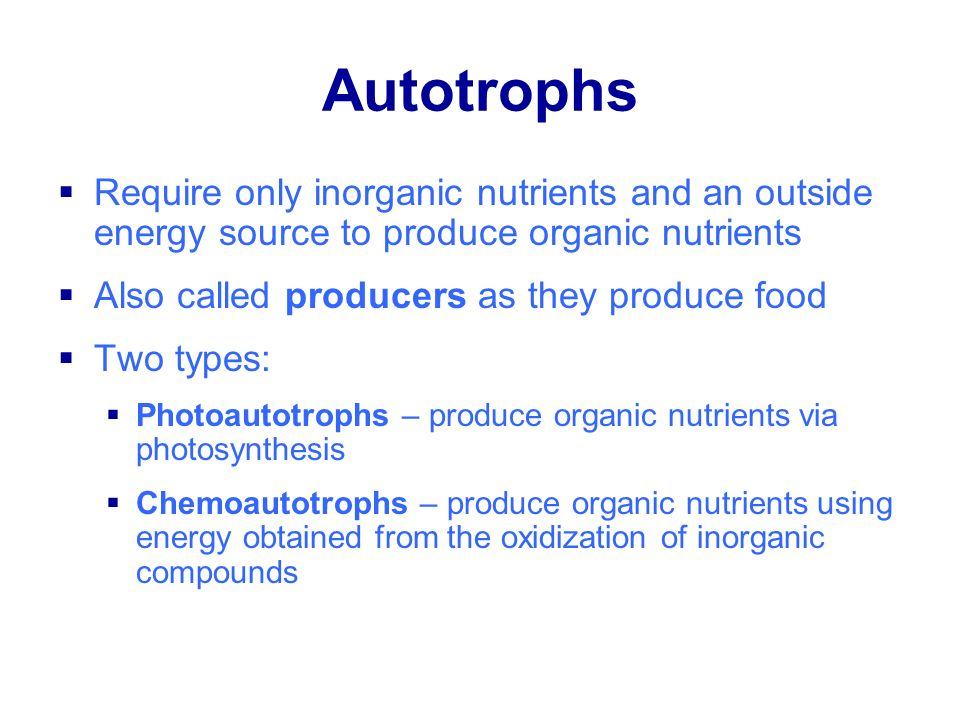 Autotrophs Require only inorganic nutrients and an outside energy source to produce organic nutrients.