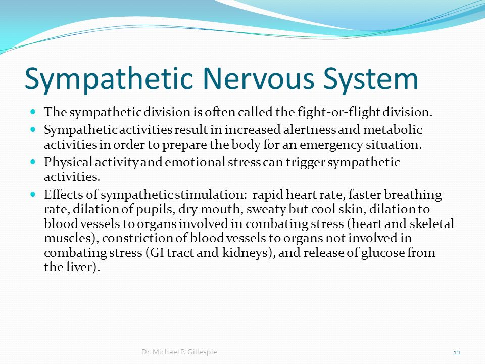 sympathetic nervous system and stress primary The sympathetic nervous system is associated with the fight or flight response and the release of cortisol throughout the bloodstream the parasympathetic nervous system puts the brakes on the sympathetic nervous system, so the body stops releasing stress chemicals and shifts toward relaxation, digestion, and regeneration.