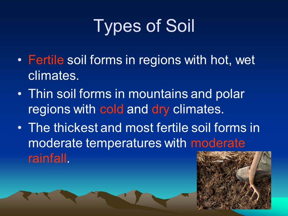 How Soil Forms Ppt Video Online Download