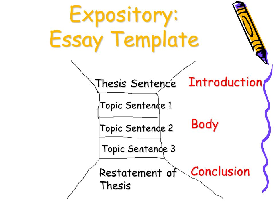 organization clarity ppt  30 expository essay template