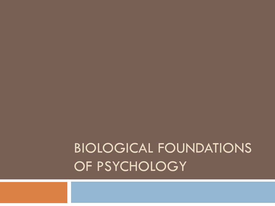identify the primary biological foundations of psychology linked to behavior essays and term papers