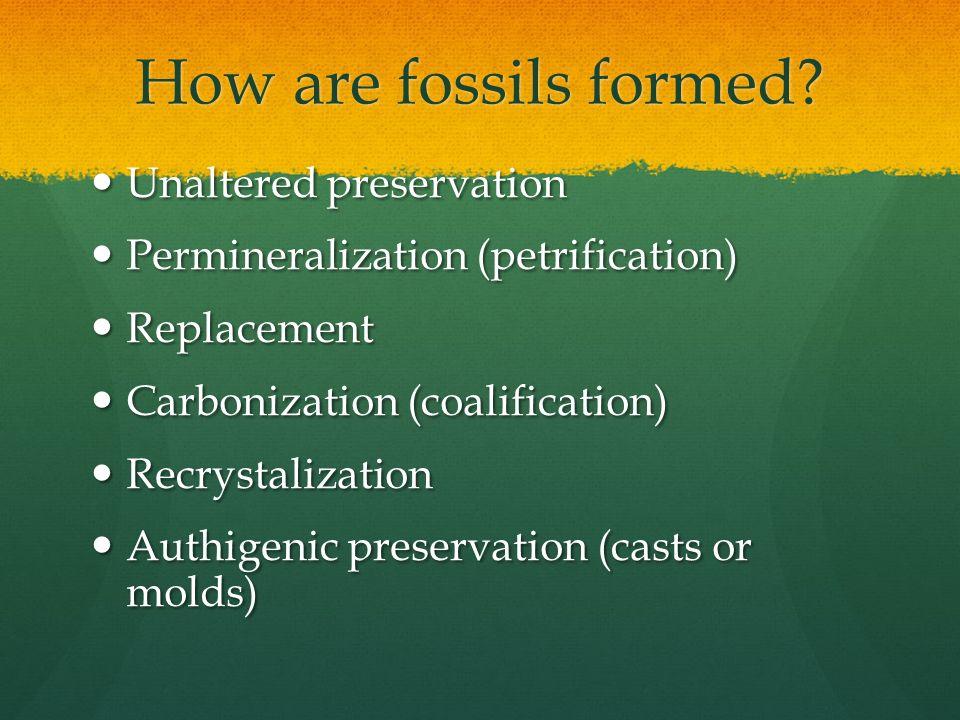 online novel biomaterials decontamination of