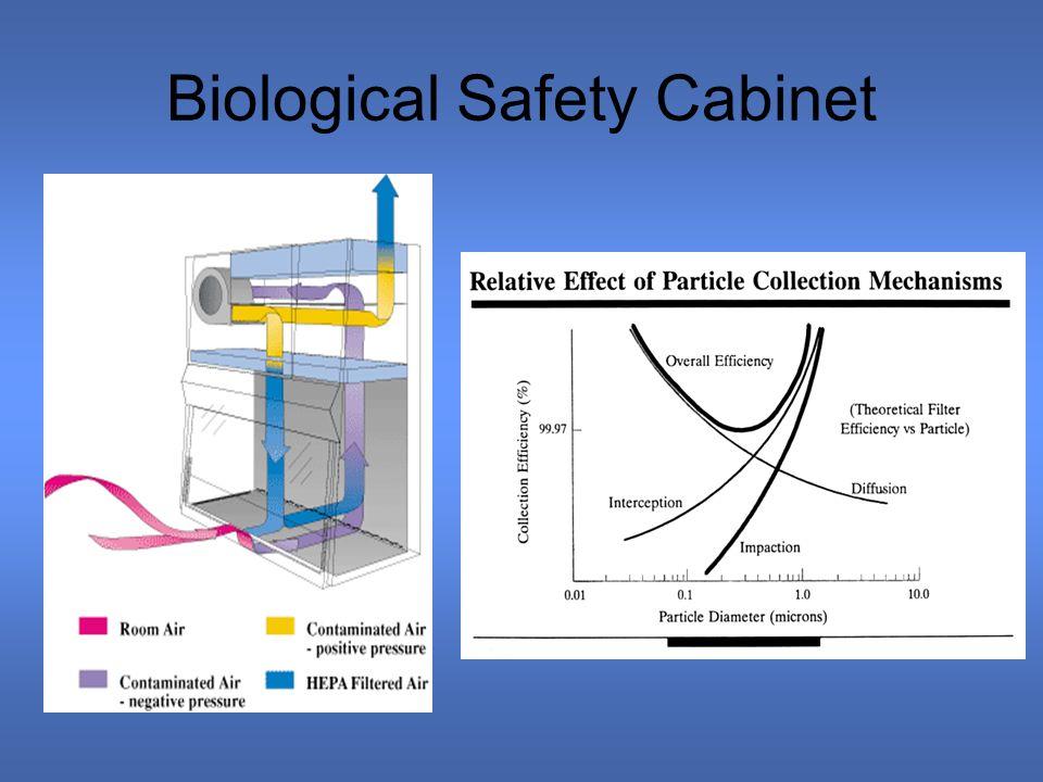 Tim Wetzel Chemical Engineering December 10, ppt download