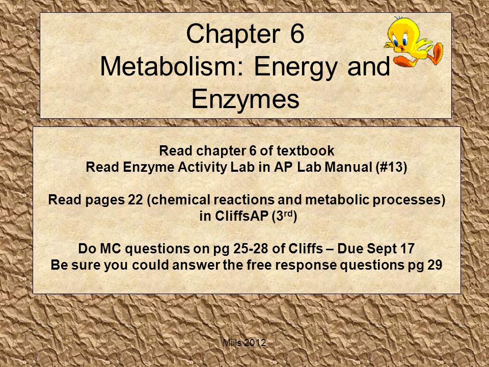 chapter 13 energy metabolism This feature is not available right now please try again later.