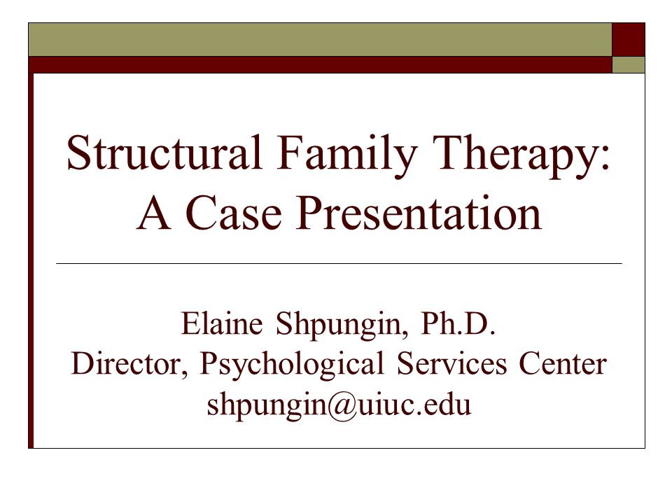 "case example of family system therapy This client has come to therapy for support in ending a physically case presentation example using mtp family system as being ""normal"" but with."