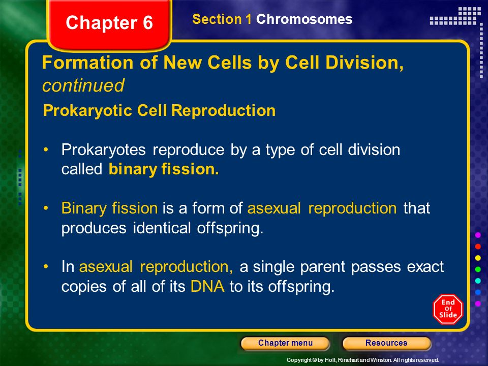 Chapter 6 Table of Contents Section 1 Chromosomes - ppt video ...