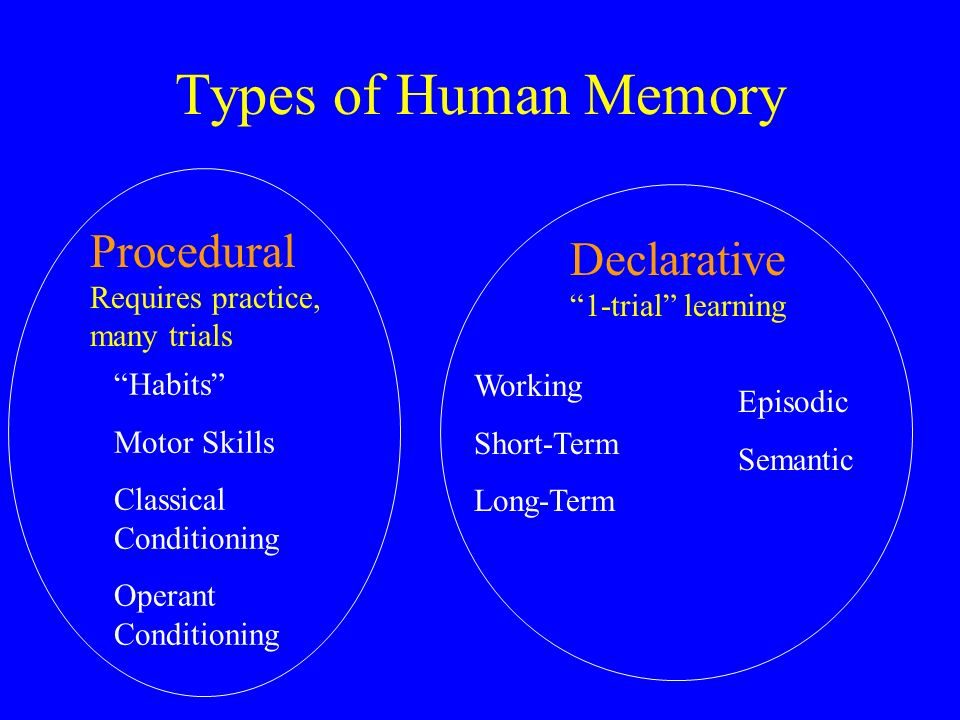 How many different types of memory
