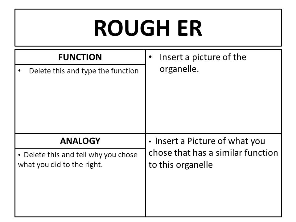 analogy for smooth er Cell Presentation Enter your name. - ppt download
