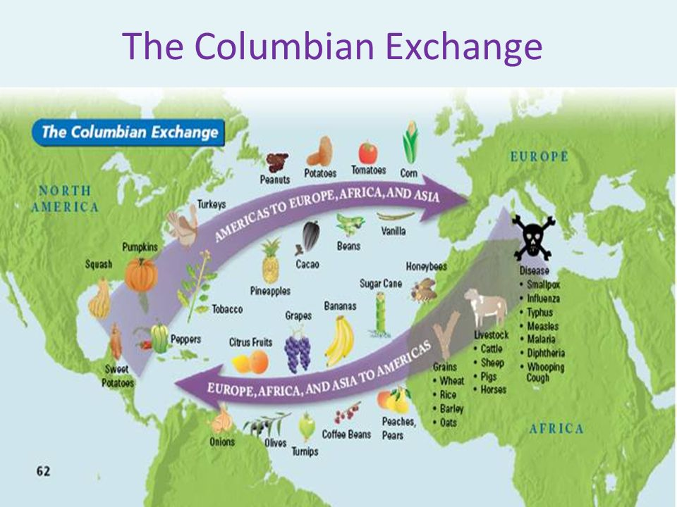 positive and negative things about the columbian exchange Tthe effects of the columbian exchange were not isolated to the parts of the he effects of the  overview of some of the neglected aspects of the columbian.