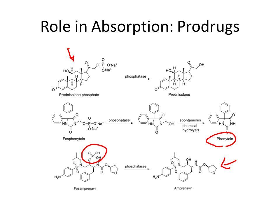 pdf alkaline phosphatase optimal ph carbonate