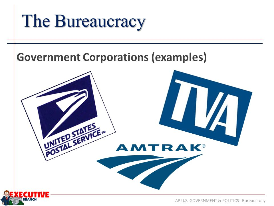 Examples Of Government Corporations Choice Image Example Cover