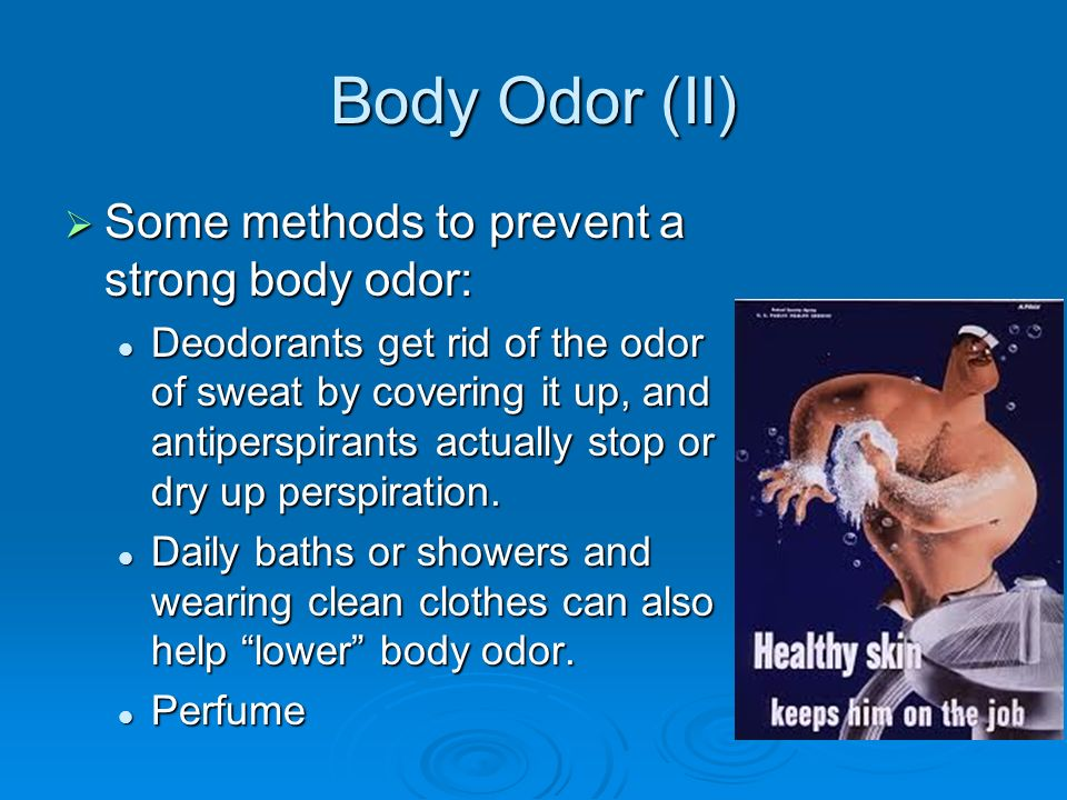 28 Best How To Get Rid Of Strong Odor In House Banish