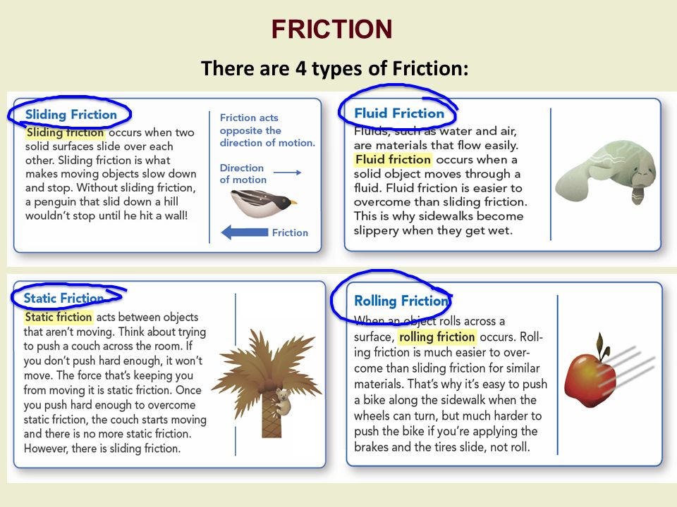Types Of Friction Worksheet - Mmosguides