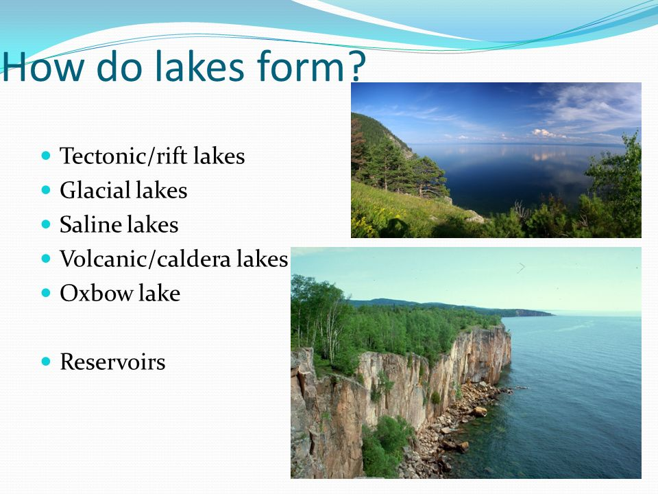 Warm Up Describe a wetland. What are some characteristics? - ppt ...