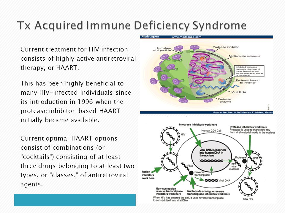 an introduction to the acquired immune deficiency syndrome Aids - acquired immune deficiency syndrome i introduction in 1981, the cdc noticed an unusual a number of cases of pneumonia caused by a fungus.