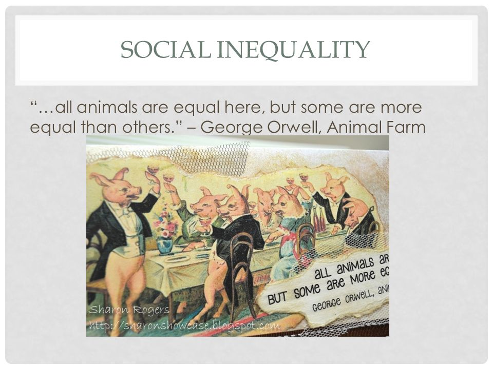 animal farm inequality An animal's life is as important and irreplaceable to them, as ours is to us but as children we are conditioned to view cows, pigs, chickens,.