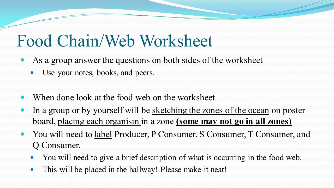 marine food web worksheet Termolak – Food Chain and Food Web Worksheet