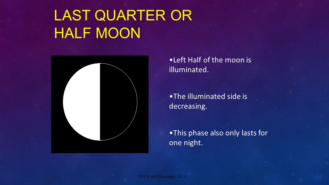 Last Quarter or Half Moon