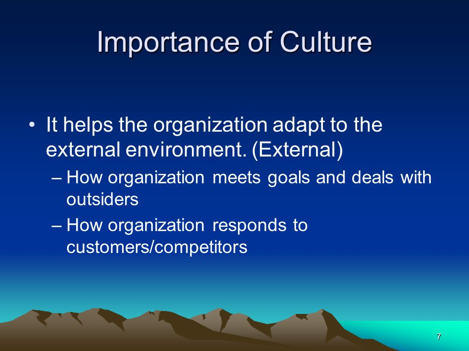 Importance of Culture It helps the organization adapt to the external environment. (External) How organization meets goals and deals with outsiders.