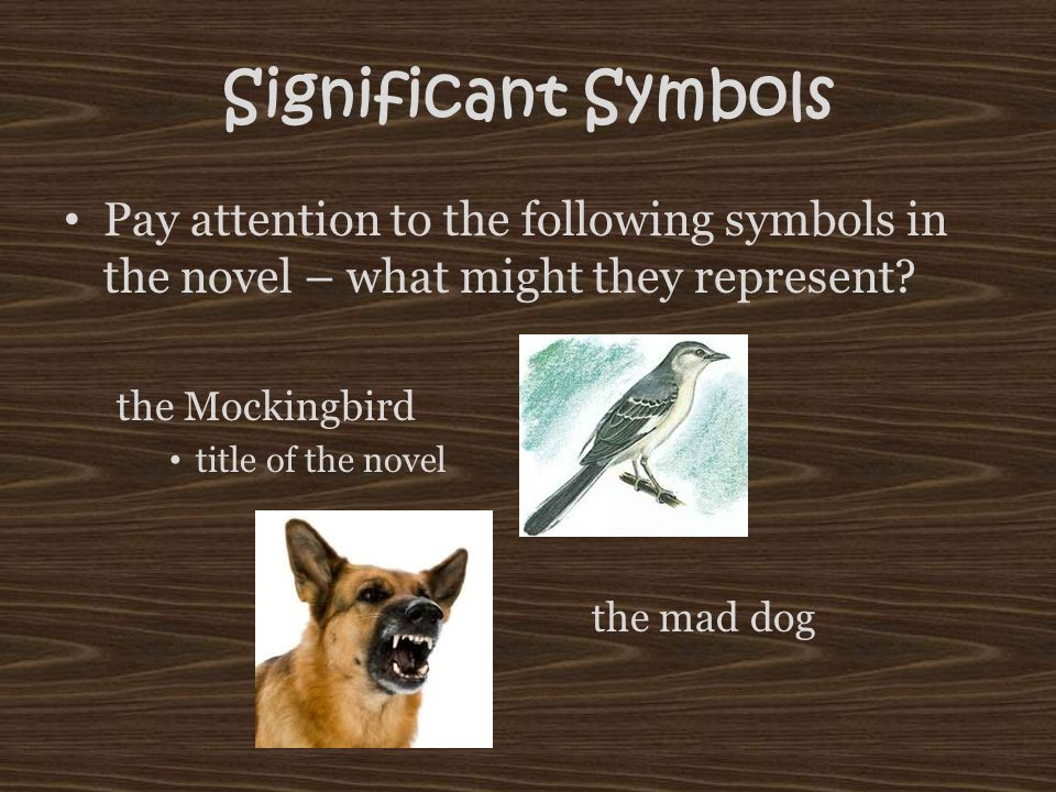 the symbolic of the title of to kill a mockingbird by harper lee In the story of to kill a mockingbird, important symbols and metaphors feature throughout, all of which trace most elements and get right into the heart of the story in a way they help tell.