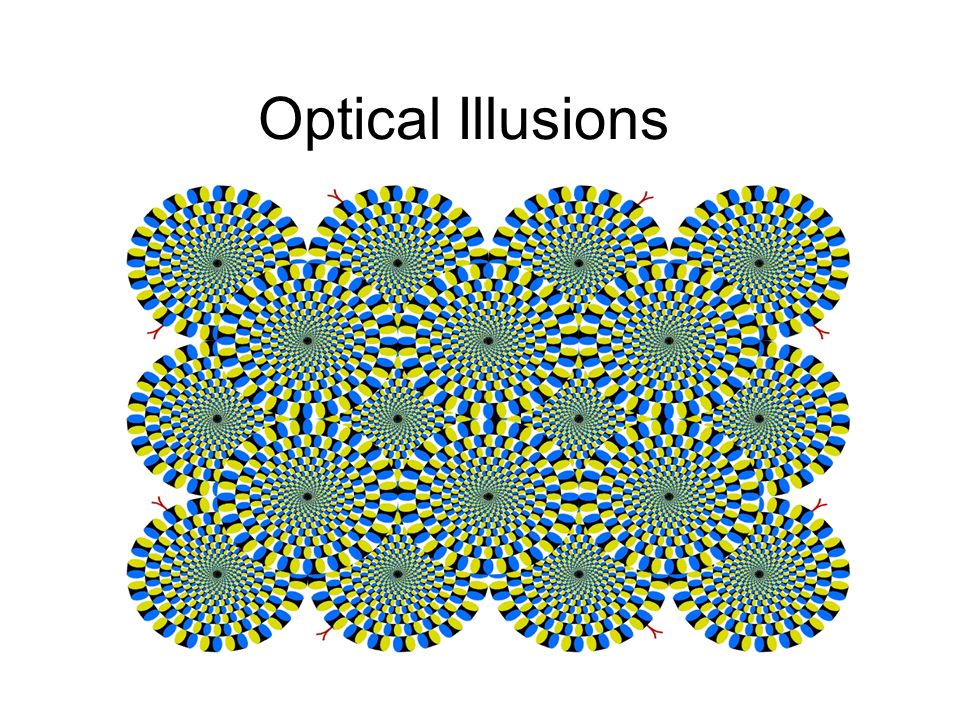 Visual Illusions