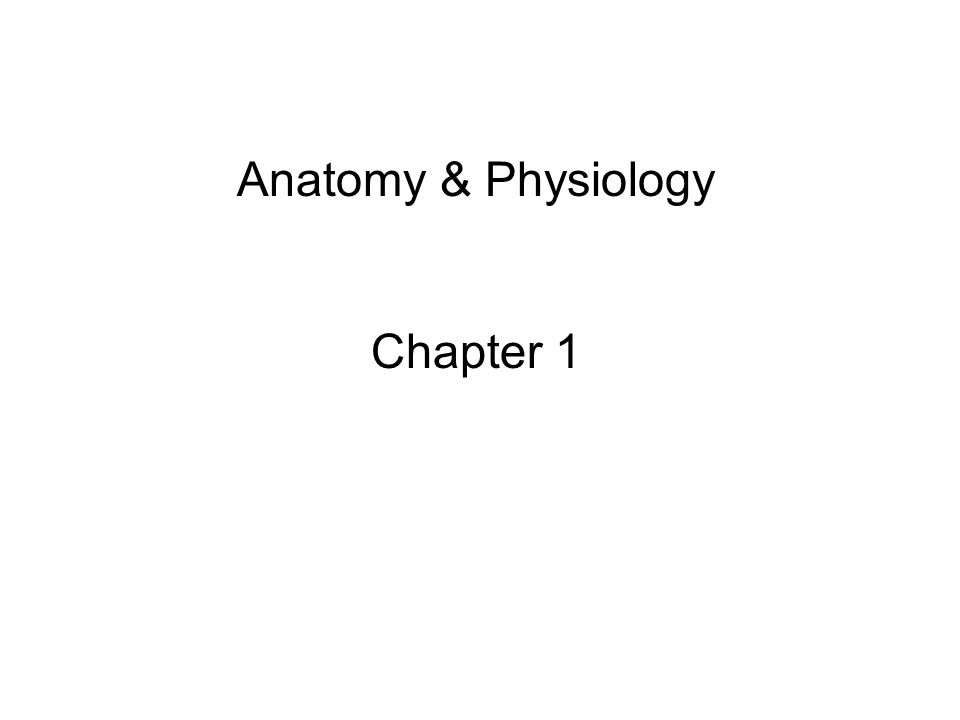 Anatomy & Physiology Chapter ppt video online download