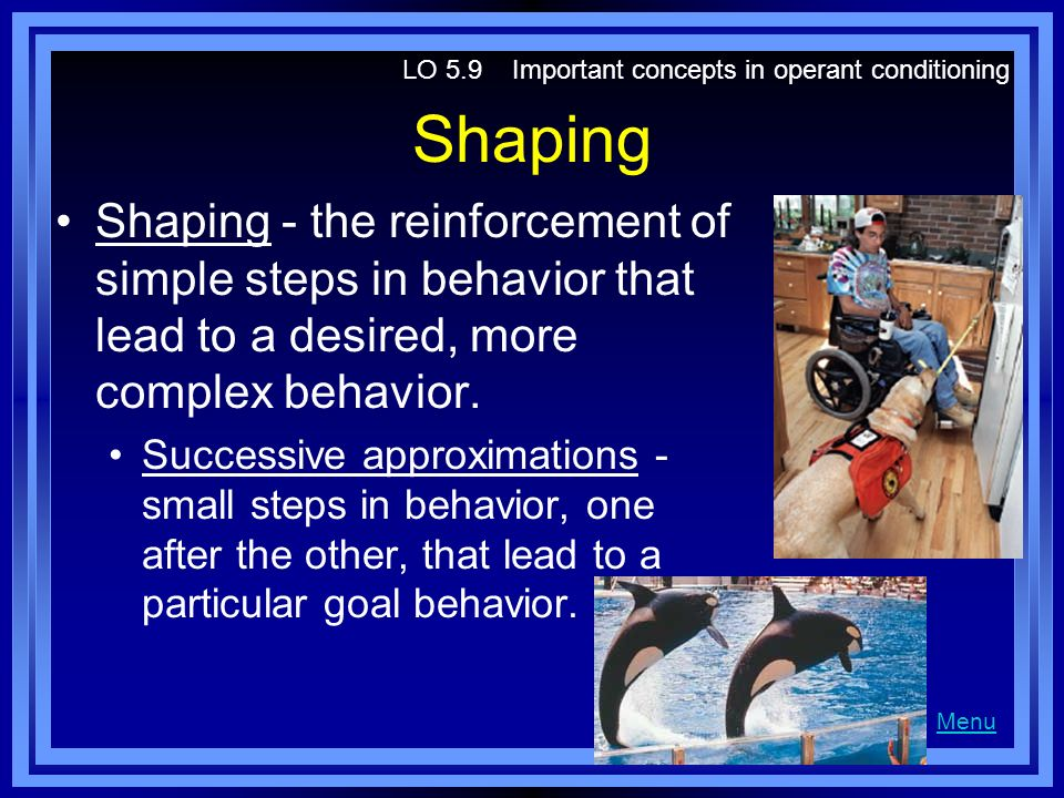 operant conditioning and temper tantrums Chapter 5 study guide practice exam questions: which of the following is not  your son never throws temper tantrums when he  in operant conditioning,.