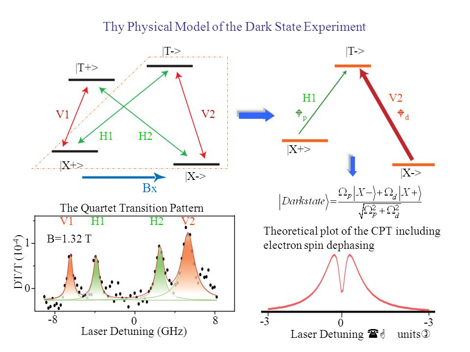 Thy Physical Model of the Dark State Experiment