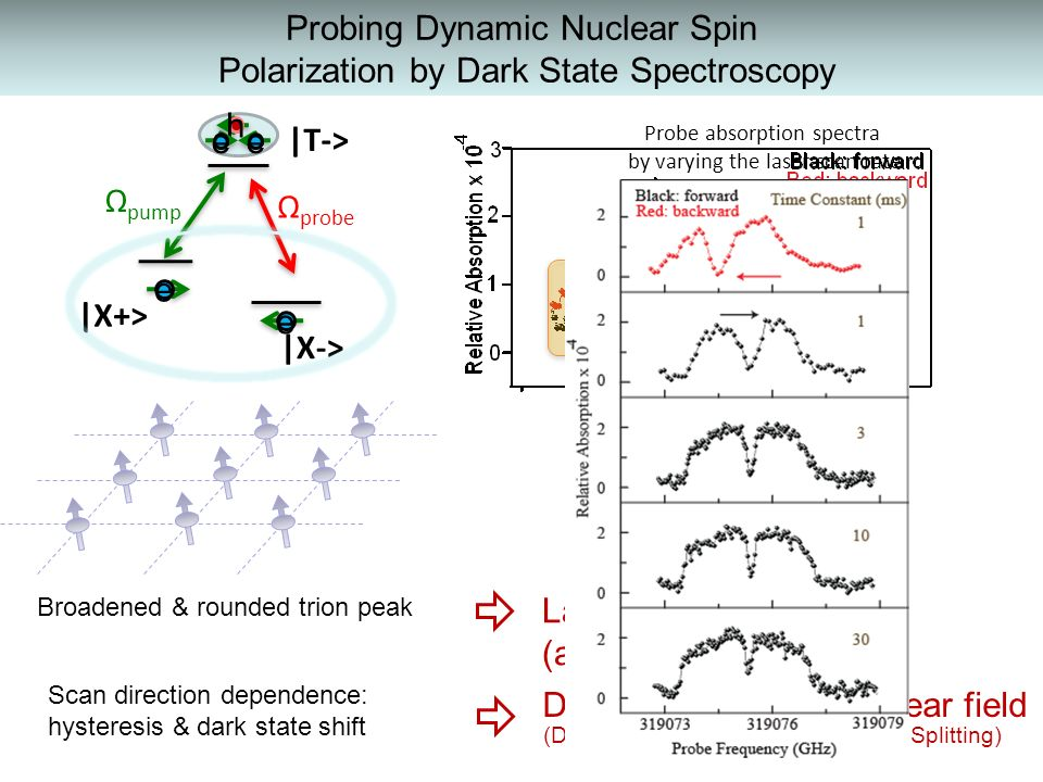 Probing Dynamic Nuclear Spin Polarization by Dark State Spectroscopy