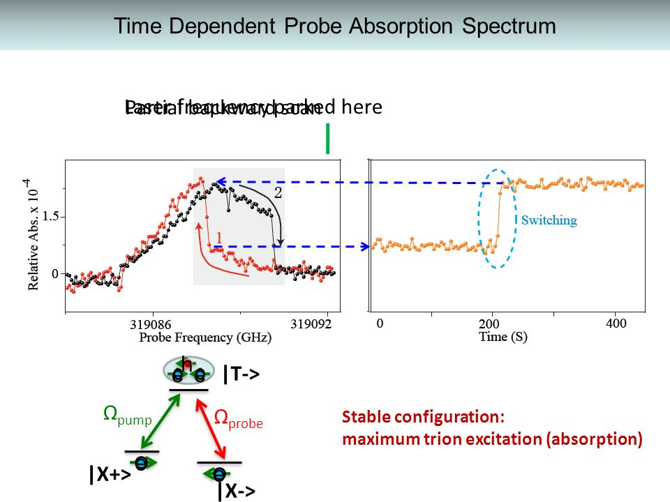 Time Dependent Probe Absorption Spectrum