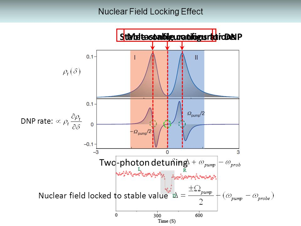 Nuclear Field Locking Effect