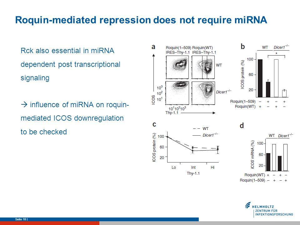 Roquin-mediated repression does not require miRNA