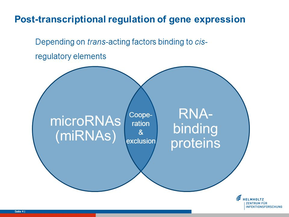 Post-transcriptional regulation of gene expression