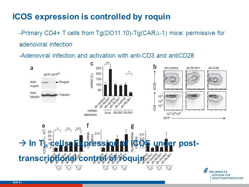 ICOS expression is controlled by roquin