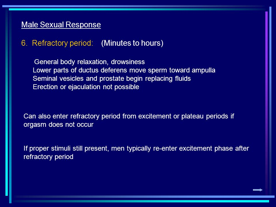 male refractory period The length of the refractory period is different for every man it may take a half hour or more for his body to perform sexually again younger men may need only a few minutes of recovery time, but older men usually have a longer refractory period, sometimes between 12 to 24 hours.