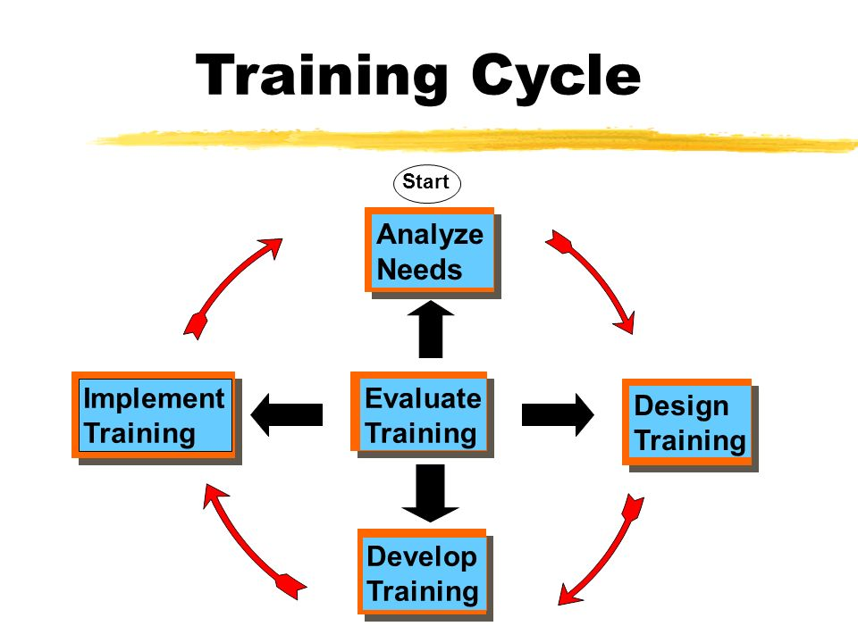 four stages of the training cycle assessment design implementation and evaluation The evaluation stage is an important part of the training cycle for three reasons first, the evaluation tells you whether or not the objectives were accomplished second, information from the evaluation stage should be fed into the assess-and-analyze stage.