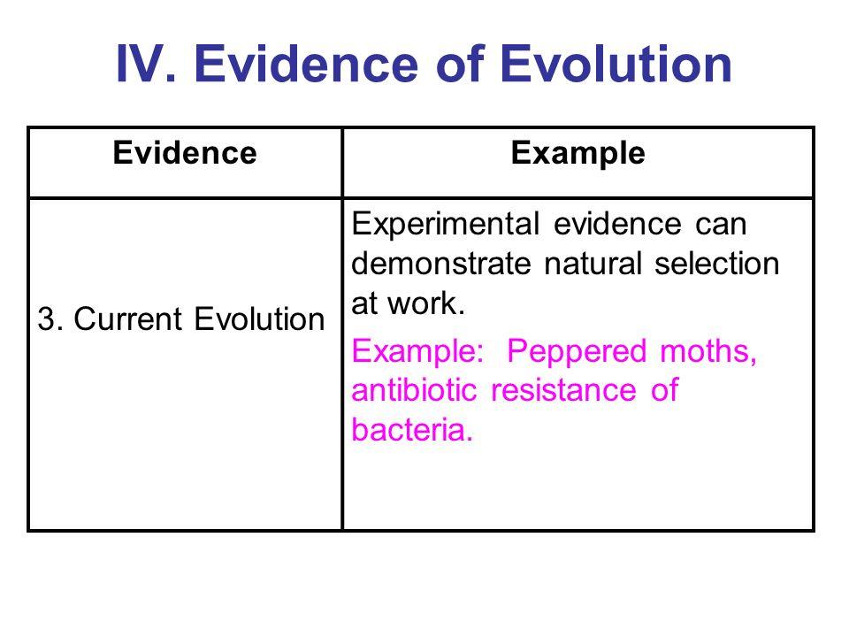 Antibiotic Resistance Natural Selection Evolution