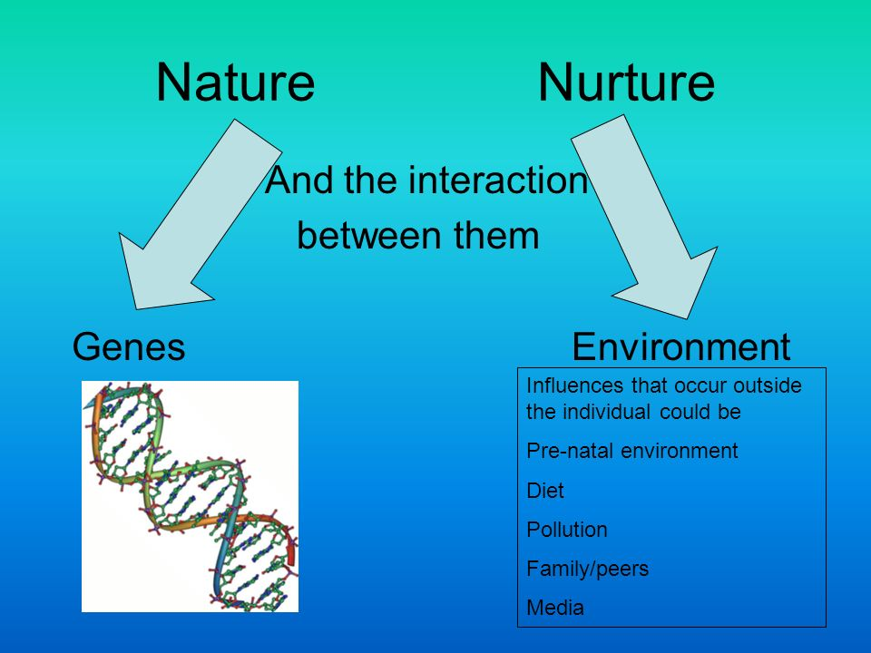 the interaction between heredity and environment Assignment topic: effects of heredity and environment on development of personality answer: introduction: personality is a.