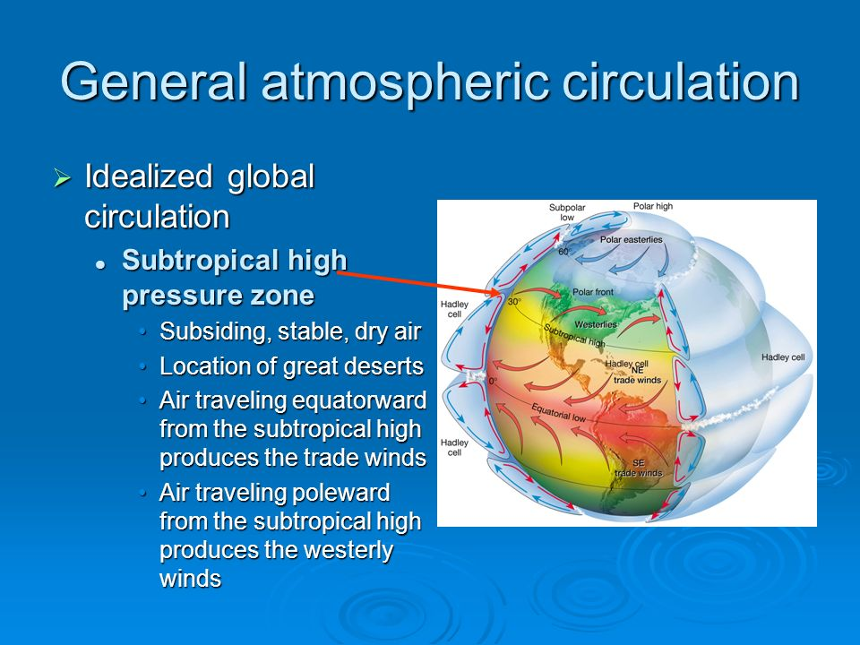 general atmospheric circulation The earth's general circulation nevertheless, the  atmospheric general circulation acts to move heat poleward 2 in hadley cell, warmer fluid rises and moves.