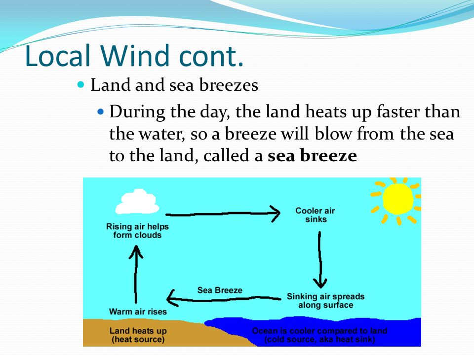 regional winds Wind 1 (wĭnd) n 1 a moving air, especially a natural and perceptible movement of air parallel to or along the ground b a movement of air generated artificially, as by bellows or a fan 2 a the direction from which a movement of air comes: the wind is north-northwest b a movement of air coming from one of the four cardinal points of the compass.