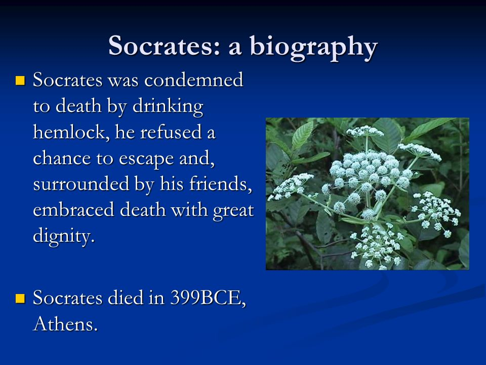a view on socrates execution and potential escape Socrates's exposure to the laws of the city is due to the indictment against him  if anybody is convicted of this charge there is execution as  athenian: in addition to these two, he has opinions about the future, whose  he argues against escaping in the crito, against the wishes of his close friends.