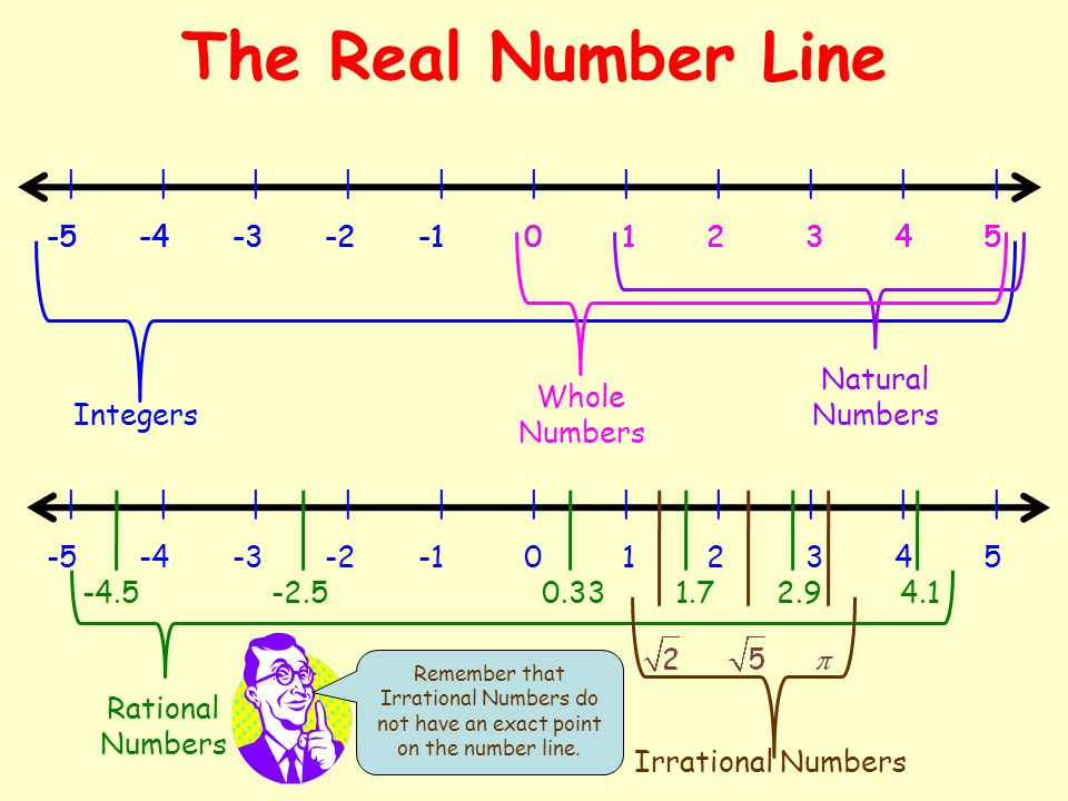 The Real Number Line | | | | | | | | | | |