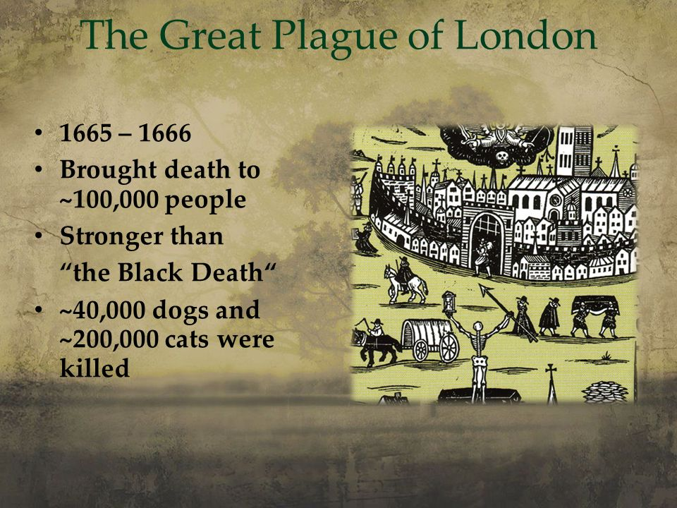 The Stuarts Mary Stuart James I, the Gunpowder Plot - ppt ...