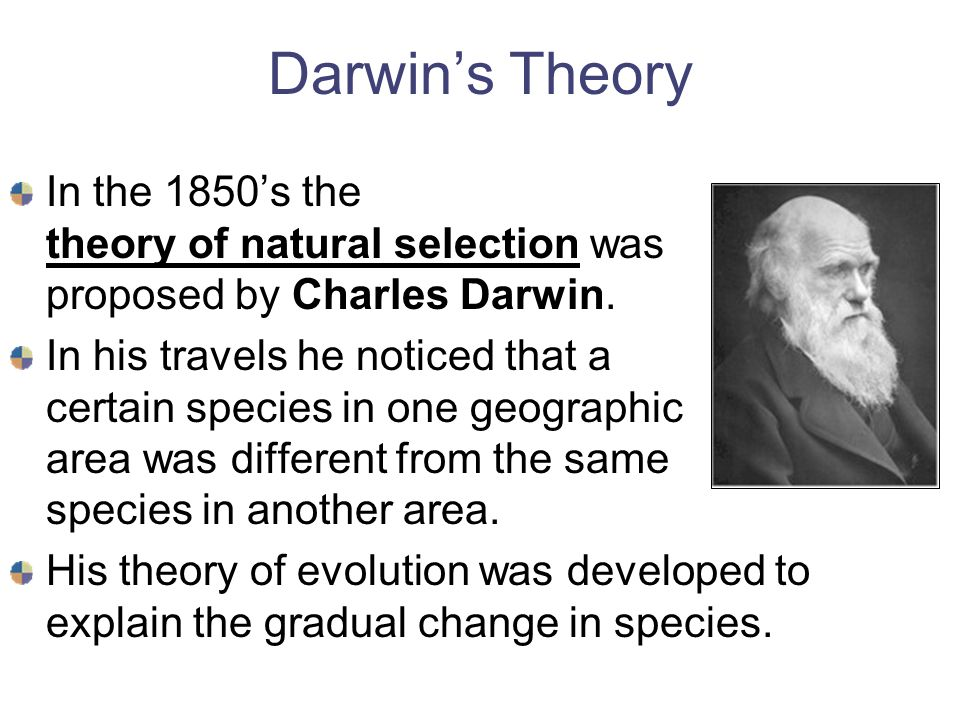 a history of the development of man and the theory of evolution By counting the generations of the bible and adding them to modern history  then prevalent theory of evolution however, neither man accepted a.
