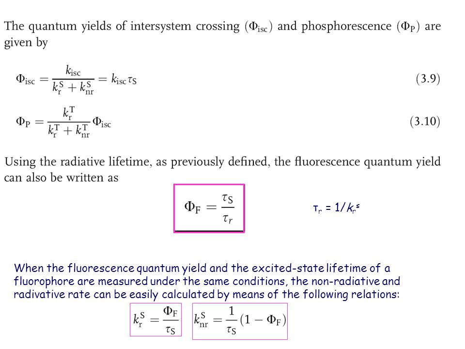 relationship between fluorescence lifetime and quantum yield