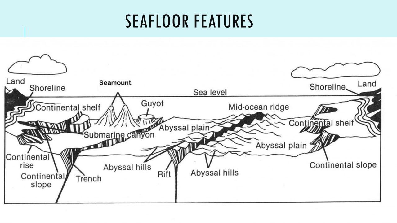 Ocean zones bathymetry ppt video online download for Ocean floor zones diagram
