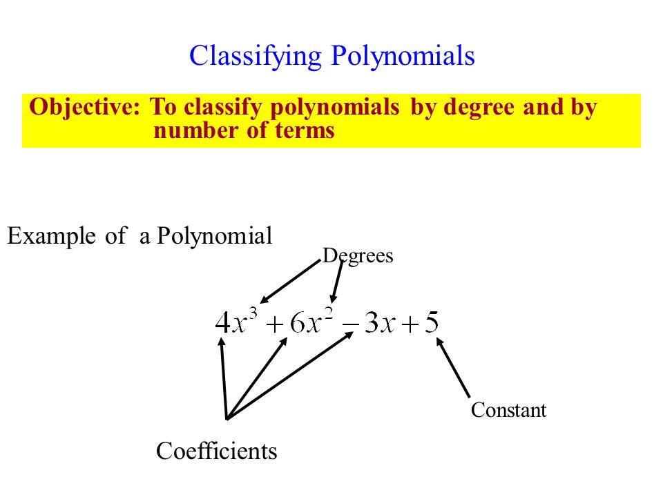 Monomial Binomial And Polynomial Operations