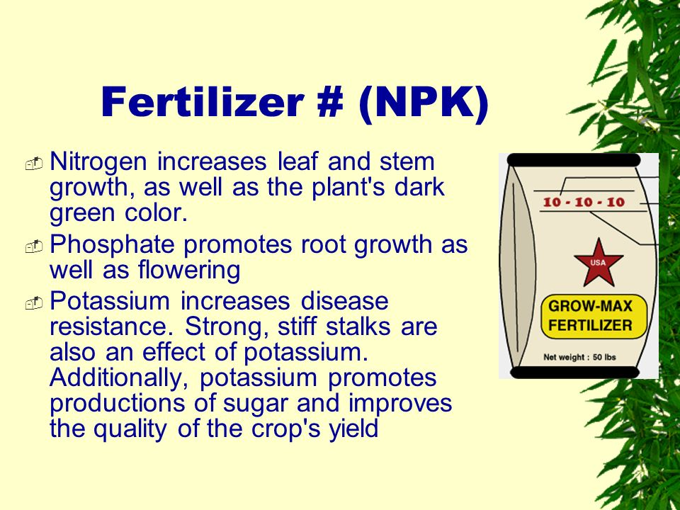 effect of nutrients on the growth Table 1–4 reviews the essential nutrients for plant growth and symptoms that may appear if a plant is suffering a deficency or an excess of that nutrient table 1–4 essential nutrients for plant growth.