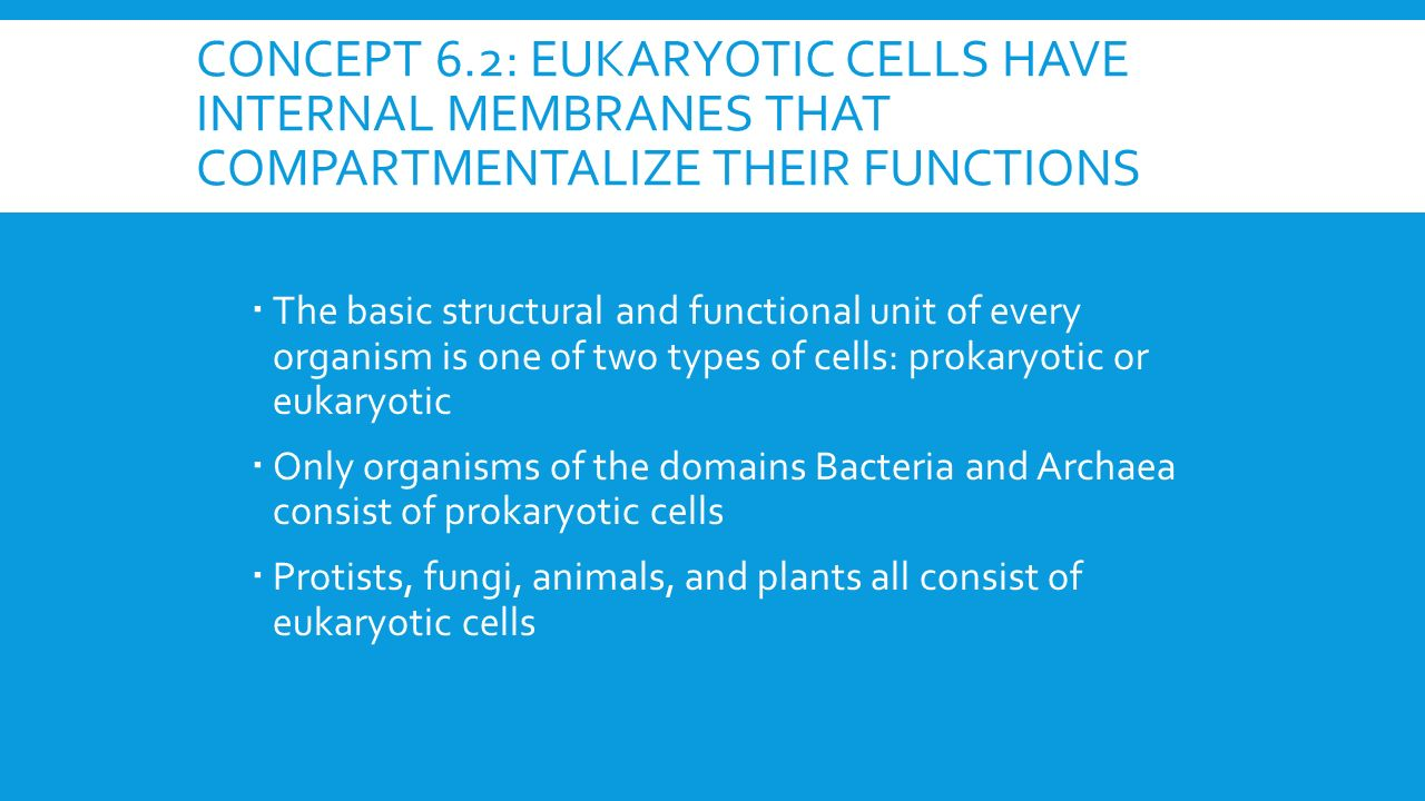 biology unit 4 study guide Quizlet provides unit 4 study guide biology activities, flashcards and games start learning today for free.
