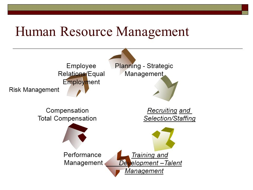 Human Resource Staffing and Performance Management ...
